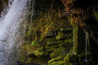 滝の写真・画像素材[2974597]