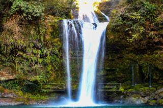 滝の写真・画像素材[2974602]