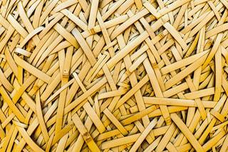 竹の写真・画像素材[2977081]