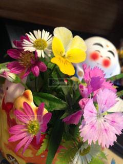 にっこりお花の写真・画像素材[2097631]