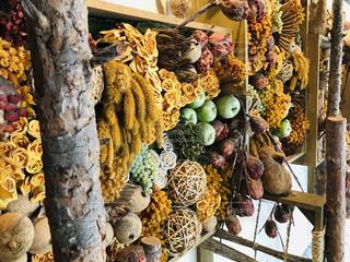 木からぶら下がっているバナナの束の写真・画像素材[2373485]
