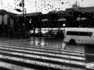 雨の中を飛ぶ鳥の群れの写真・画像素材[2266553]