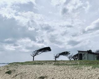 砂浜のクローズアップの写真・画像素材[2267482]