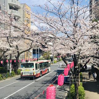 道路の脇に停車しているバスの写真・画像素材[2284932]