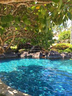 バリ島のプライベートプールの写真・画像素材[2106047]