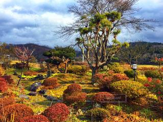 日本庭園(秋)の写真・画像素材[2108108]