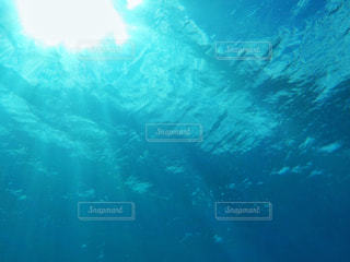 海中からの眺めの写真・画像素材[2118884]