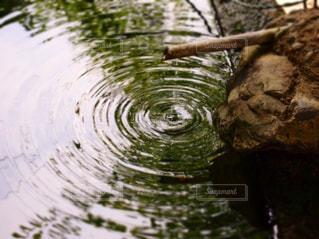 水の波紋の写真・画像素材[2100031]