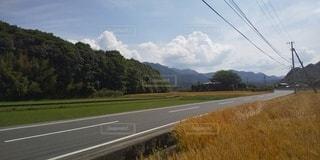 小麦畑とアスファルトの写真・画像素材[2123909]