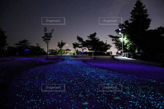 神戸夜景   摩耶きらきら小径の写真・画像素材[982934]