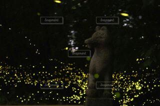 お稲荷さんと姫蛍の写真・画像素材[4662960]