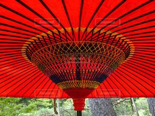 野点傘の写真・画像素材[2114771]