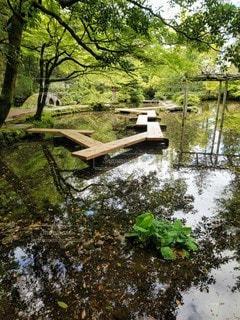 尾山神社の写真・画像素材[2109459]