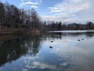 木々に囲まれた湖の写真・画像素材[2117627]