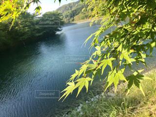 紅葉と湖の写真・画像素材[2105795]