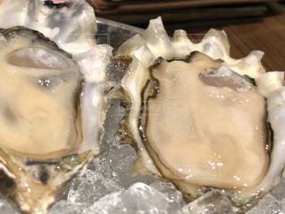 生牡蠣の写真・画像素材[2154426]