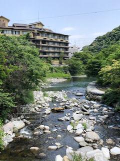 箱根の河原の写真・画像素材[3311022]