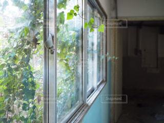 廃墟の窓の写真・画像素材[2243019]
