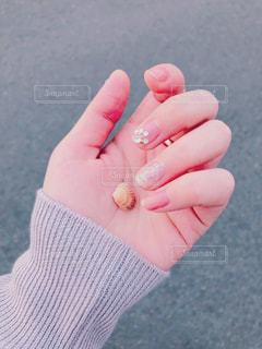 貝殻のおとしもの。の写真・画像素材[2106211]