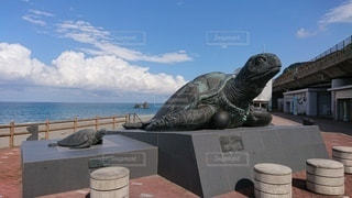 親不知の亀の像の写真・画像素材[2108926]