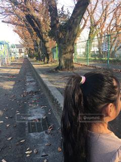 学校の校庭の写真・画像素材[2109431]