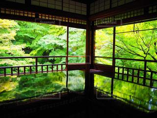 大きな窓の眺めの写真・画像素材[2182988]