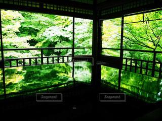 窓から外を見る景色の写真・画像素材[2182990]