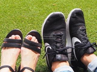 足の写真・画像素材[3918762]