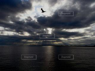 海の写真・画像素材[164934]