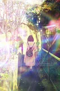 光と影の写真・画像素材[2119755]