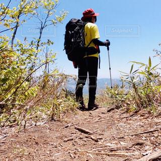 登山!の写真・画像素材[2165734]