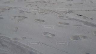 浜辺の人々の足跡の写真・画像素材[2108487]