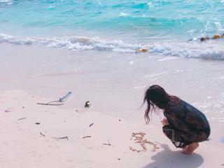 浜辺の水の中の亀の写真・画像素材[2110266]