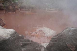 岩のクローズアップの写真・画像素材[2112189]