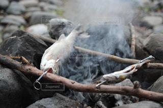 焼き魚の写真・画像素材[2131992]