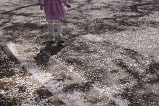 桜と女の子の写真・画像素材[2115385]