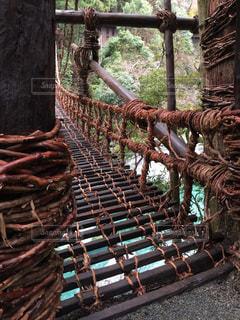 有名な かずら橋。チョー怖ぇ〜〜(≧∇≦)の写真・画像素材[2119908]