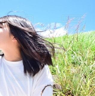 爽やかな風が感じられる時期。の写真・画像素材[2220689]