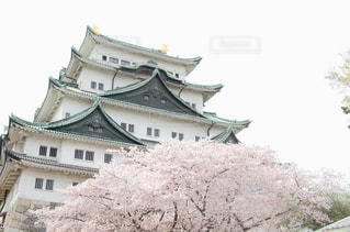 名古屋城の屋根の写真・画像素材[2202300]