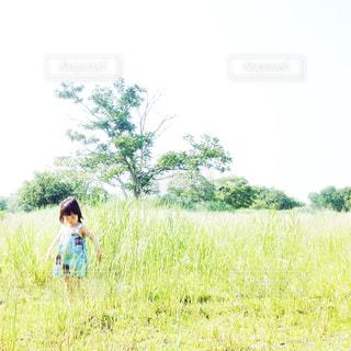 ワンピースの女の子の写真・画像素材[651407]