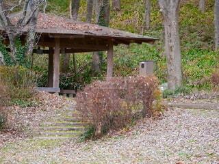 森の中の家の写真・画像素材[2176690]