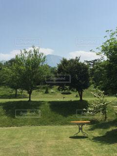 緑のフィールドの横にある空の公園のベンチの写真・画像素材[2126284]