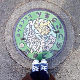動物園のマンホールと足元の写真・画像素材[933247]