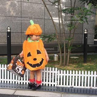 ハロウィンパレードでかぼちゃキッズ仮装をした女の子の写真・画像素材[1529896]