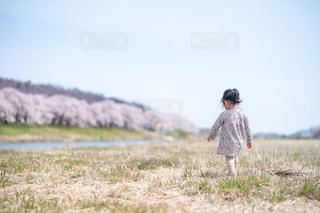 桜が見える河川敷に立つ少女の写真・画像素材[2303973]
