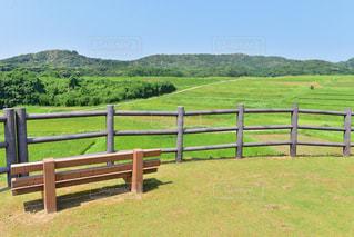 緑豊かな景色の写真・画像素材[2359928]