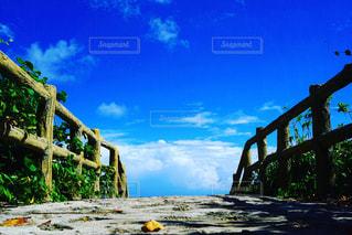 川に架かる橋の写真・画像素材[2122799]