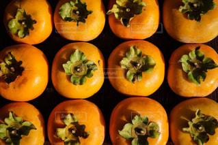並んだ柿の写真・画像素材[2149157]
