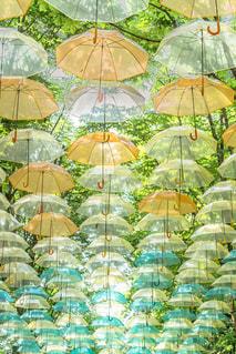 カラフルな傘の写真・画像素材[2322031]