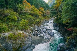 奥多摩鳩ノ巣渓谷の写真・画像素材[2386349]